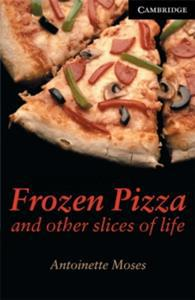 FROZEN PIZZA AND OTHER SLICWES OF LIFE
