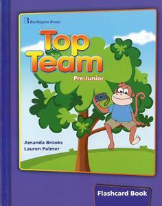 TOP TEAM PRE-JUNIOR FLASHCARDS